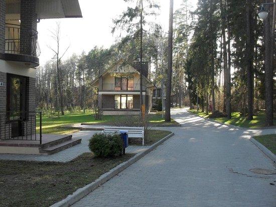 Hotel Westa: Территория
