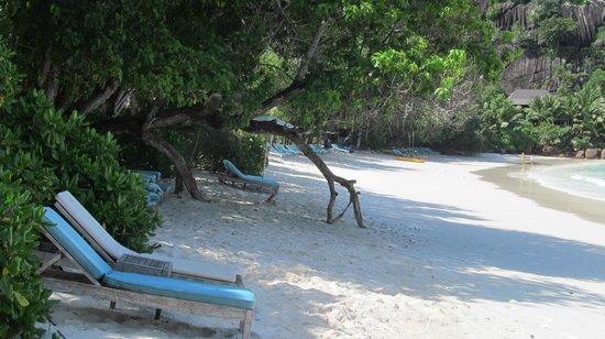 Petite Anse: Пляж