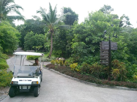 Petite Anse: На территории отеля