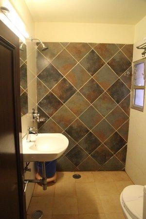 Hotel Shalimar: Туалет + душ