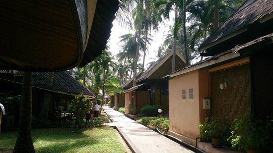 Krabi Resort : вид на аллею с бунгало, линия В