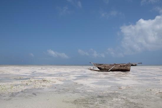 Dream of Zanzibar: low tide - Ebbe