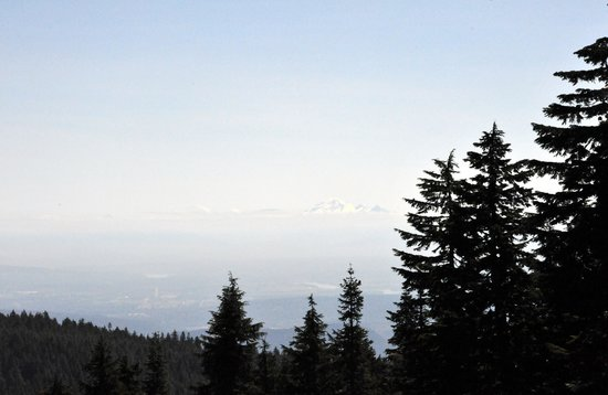 Grouse Mountain: View from up the top.