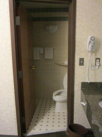 Drury Inn & Suites San Antonio Riverwalk: Bathroom in Room 537
