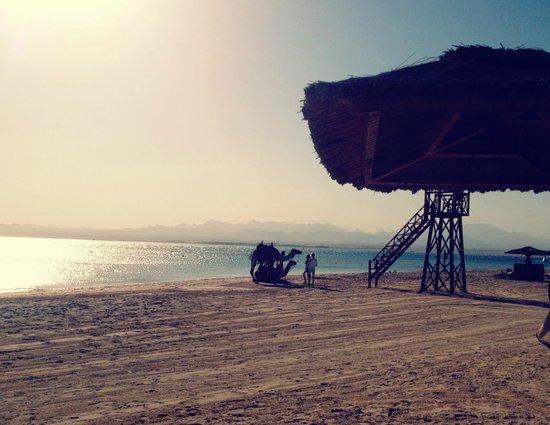 Kempinski Hotel Soma Bay : Strand 2