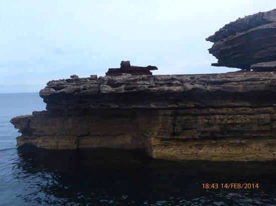 Jervis Bay Wild Cruises: WW2 era torpedo tubes facing across the entrance to the Bay
