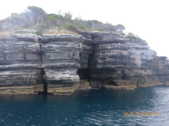 Jervis Bay Wild Cruises: Rocky headland