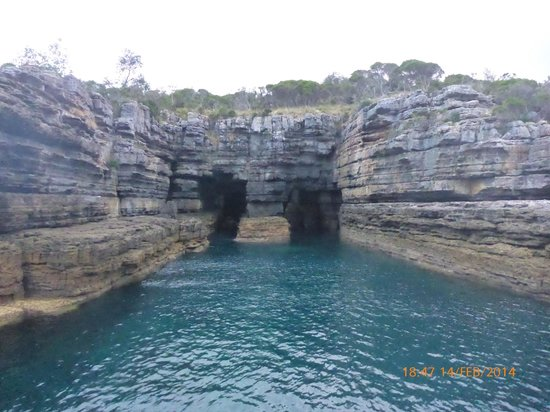 Jervis Bay Wild Cruises: Crystal clear waters
