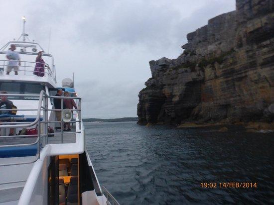 Jervis Bay Wild Cruises: Cruising down the coast