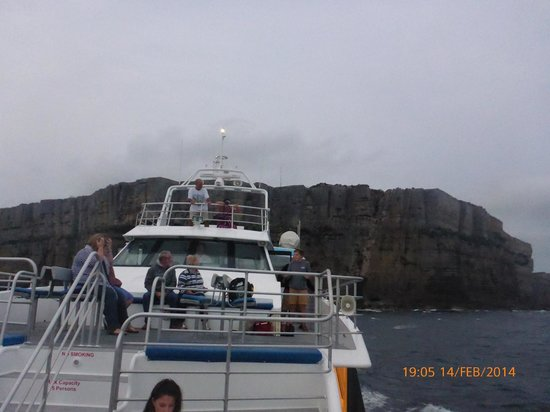 Jervis Bay Wild Cruises: Evening Cruise