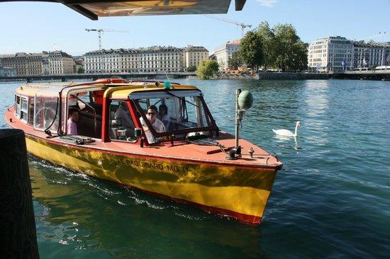 Lago de Ginebra: Городской транспорт