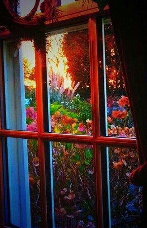 The Jack Rabbit Vintage Inn: Window view