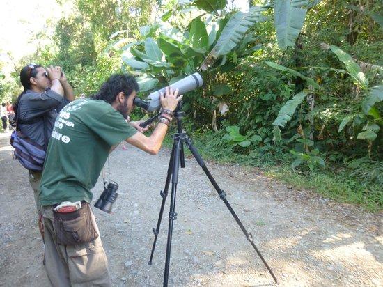 Greentique Costa Rica Tours: Cesar