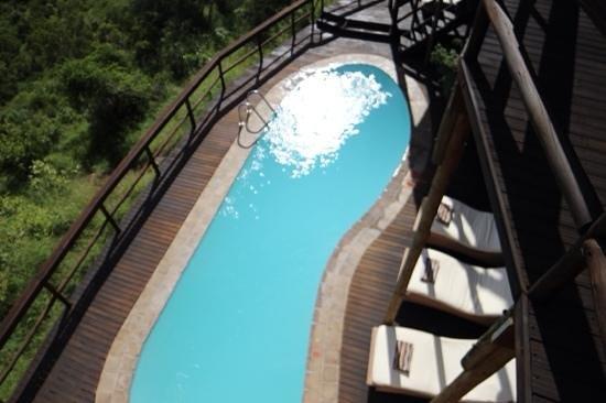Ulusaba Safari Lodge: a dip with a view!