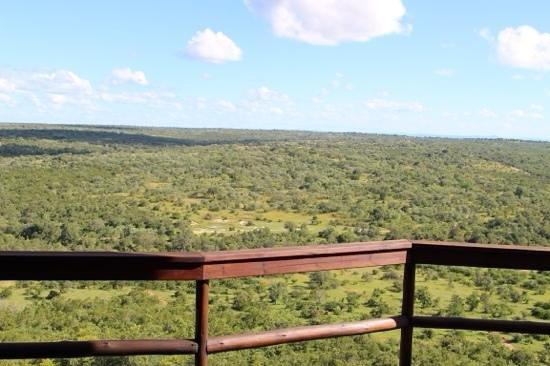 Ulusaba Safari Lodge: view from the room