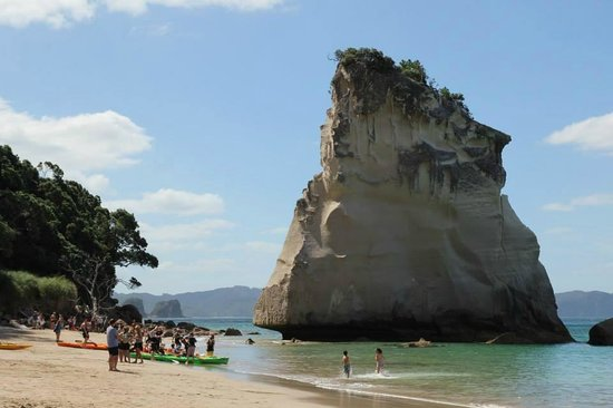 Cathedral Cove Walk : Rock formation off Cathedral Beach