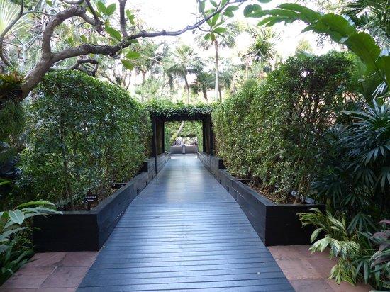 Anantara Riverside Bangkok Resort: Brücke vom Südflügel zum Pool
