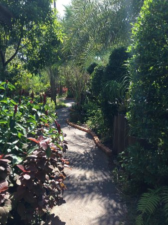 Baan Habeebee Resort: path to rooms