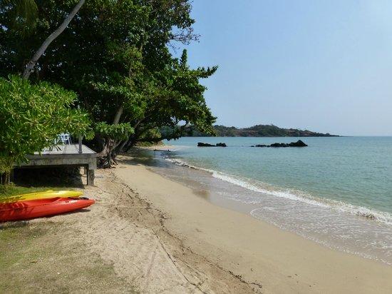 Plubpla Koh Mak Retreat: Stranden, fotad precis nedanför poolen