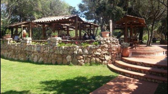 Pozzo di Mastri: La terrasse