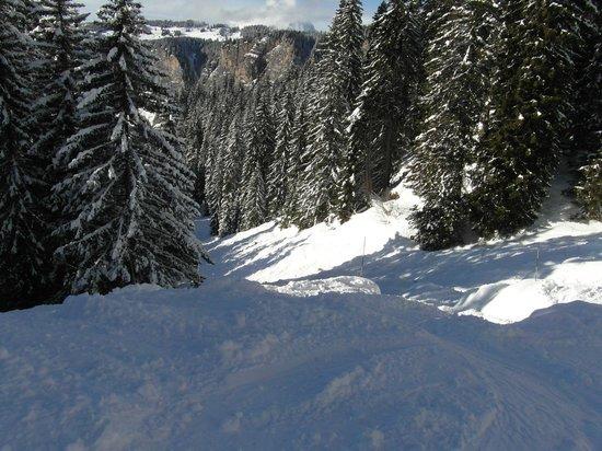 Chalet Hotel Bel 'Alpe: Black Run Combette in Avoriaz