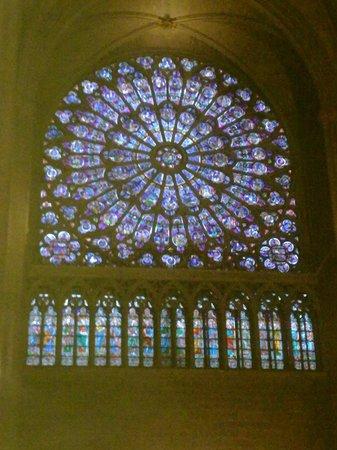 Cathédrale Notre-Dame de Paris : Cristalera Notre Dame