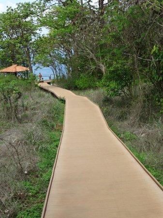 Baia do Sancho: Rampa de acesso ao Mirante