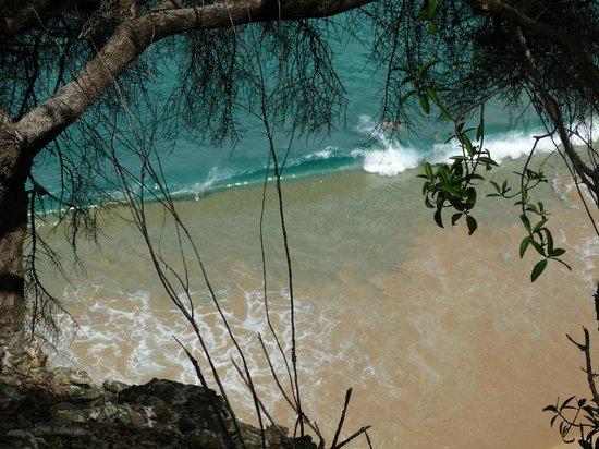 Baia do Sancho: Praia vista do Mirante