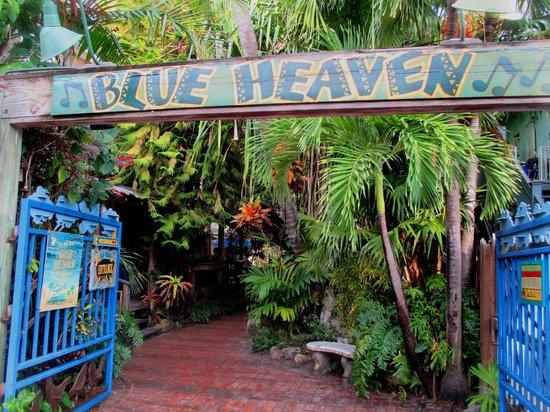 blue heaven essen erotikmesse neu ulm