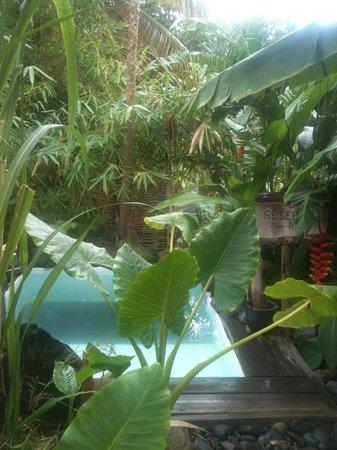 Residence Orcea : le spa