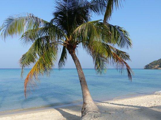 Phi Phi Island Village Beach Resort: Traum