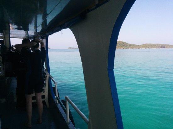 Rainbow Divers-Phu Quoc: Beautiful