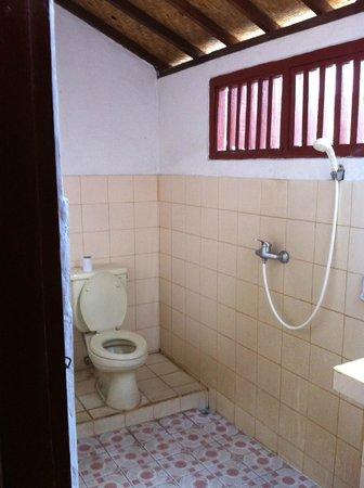 Swan Inn: bathroom