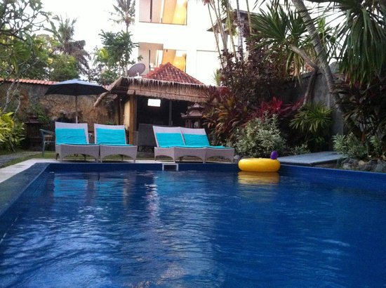 Cafe Locca Homestay : pool!