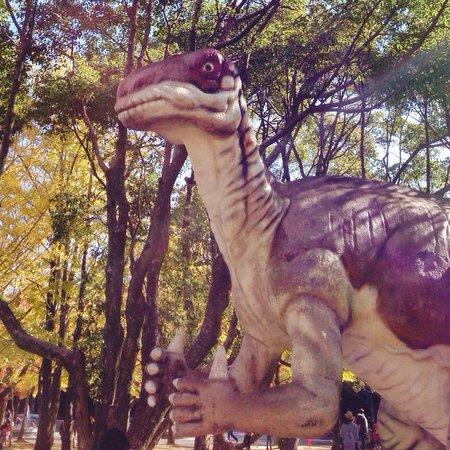 Toyohashi General Botanical Garden, Non Hoi Park: Non Hoi Park Toyohashi