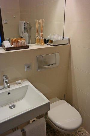The Cambrian : bathroom