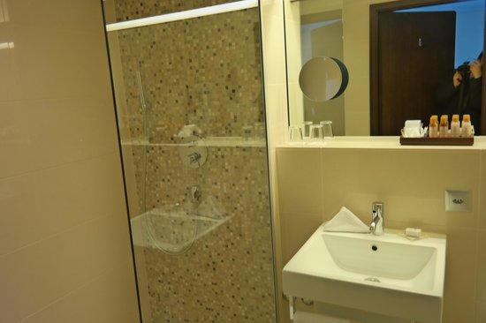 The Cambrian: bathroom