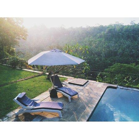 Puri Bunga Resort and Spa: lovely pool
