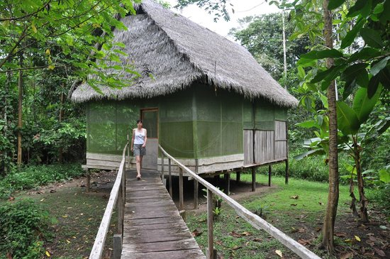 Amazon Yanayacu Lodge: наш дом