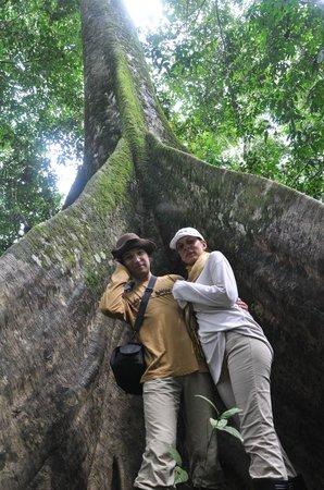 Amazon Yanayacu Lodge: прогулка по джунглям