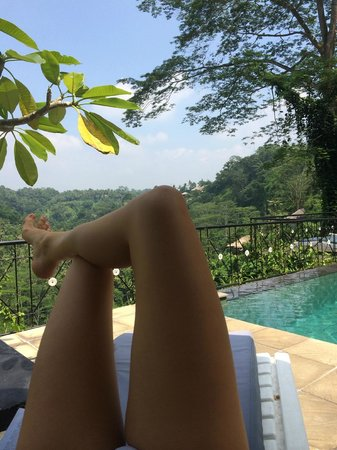 Puri Bunga Resort and Spa : by the pool
