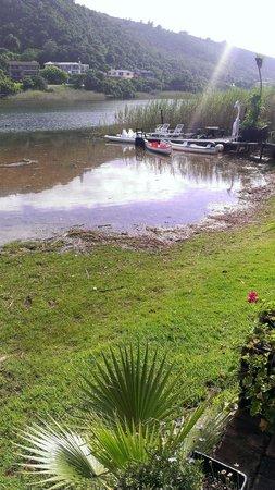 Moontide Guest House: Garten vom Boathouse-Zimmer aus