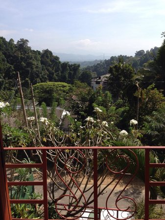 Nature Walk Resort: Great view from the rooms