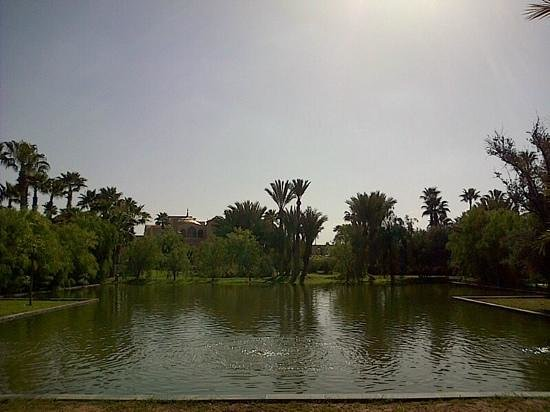 Palais Namaskar: Hotel gardens