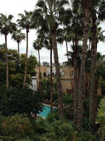 Jardin picture of les jardins de la medina marrakech for Le jardin de la medina