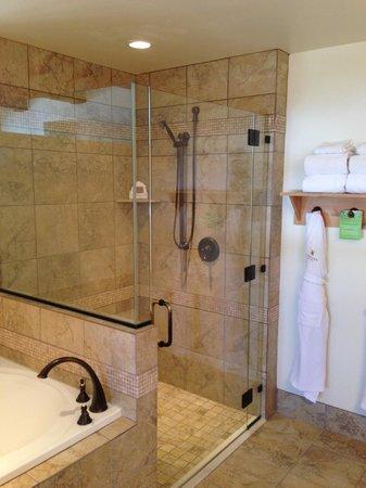 Newpark Resort & Hotel : Shower