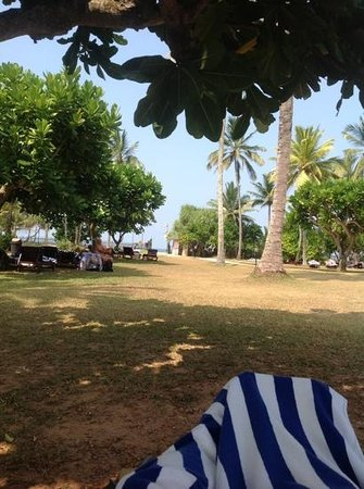 Bentota Beach by Cinnamon : grounds with the beach in the background