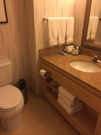 Bathroom, note the height of the bench! - Picture of Hilton Los ...