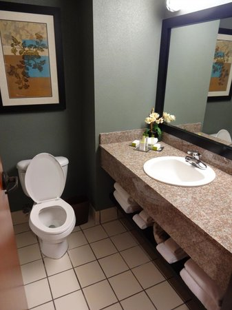Doubletree by Hilton Orlando at SeaWorld: Tower room bathroom