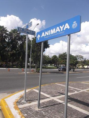 Parque Animaya: Suivez la flèche ou prenez un taxi !  9 février 2014,